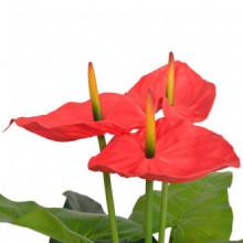 Planta de anturio artificial conaceta 90cm roja...