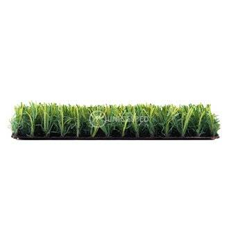 Césped Little Grass UNICESPED